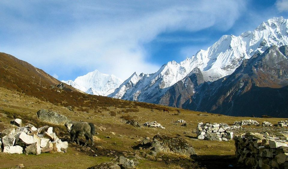 Langtang Valley Tramping