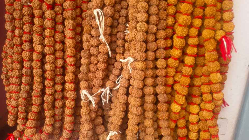 Rudraksha Benefits [Types and About Ek Mukhi in Nepal]